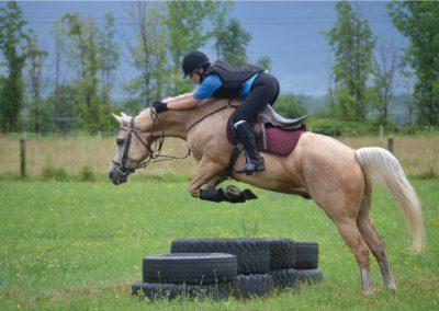 HorseCampGallery15