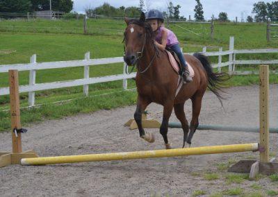 HorseCampGallery2