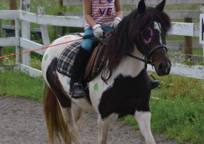 HorseCampGallery28