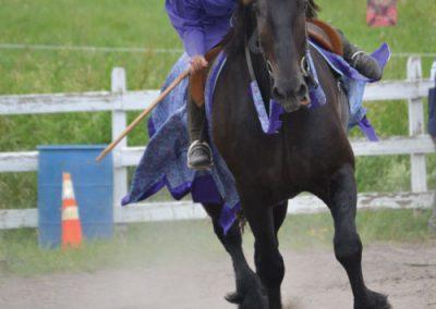 HorseCampGallery32